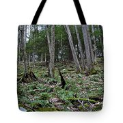 Fern And Hemlock Hill Tote Bag