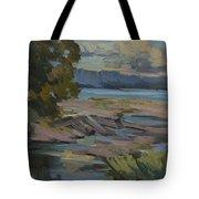 Fern Cove Vashon Island Tote Bag