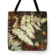 Fern In The Forest Tote Bag
