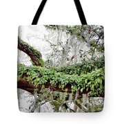 Resurrection Fern On The Limbs Tote Bag