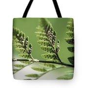 Fern Seeds Tote Bag