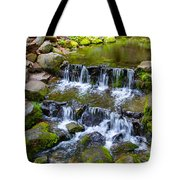 Fern Spring In Spring In Yosemite Np-2013 Tote Bag