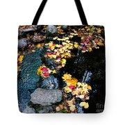 Fern Spring Yosemite Tote Bag