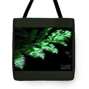 Ferns # 1 Tote Bag