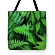 Ferns Along The River Tote Bag