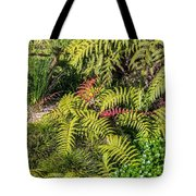Ferns And More Tote Bag