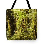 Ferns And Moss Tote Bag