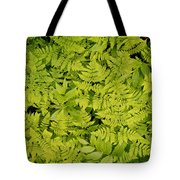 1m2436-ferns At The Base Of Mt. Robson  Tote Bag