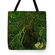 Ferns In The Jungle Room Tote Bag
