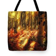 Ferns On The Forest Floor Tote Bag