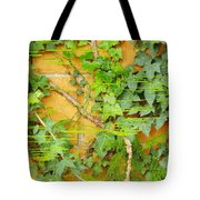 Ferns Vines And Lines 2am-112099 Tote Bag
