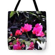 Fernwood Botanical Garden Bougainvillea Niles Michigan Usa Tote Bag