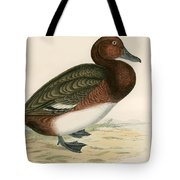 Ferruginous Duck Tote Bag