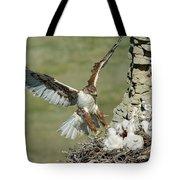 Ferruginous Hawk And Chicks Tote Bag