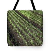 Fertile Farmland Tote Bag
