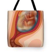 Fetal Growth - Month 4 Tote Bag
