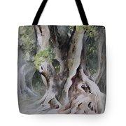 Ficus Aurea Tote Bag