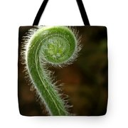 Fiddlehead Fern Curl Tote Bag
