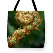 Fiddlehead Tote Bag