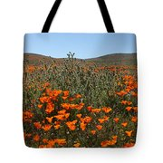 Fiddlenecks And Poppies Tote Bag