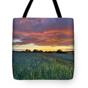 Field At Sunset Tote Bag