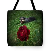 Field Of Clover Tote Bag