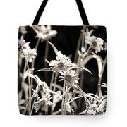 Field Of Daisies Tote Bag