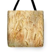 Field Of Gold - 4 Tote Bag