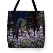 Field Of Summer Wildflowers Backlit Lupine  Tote Bag