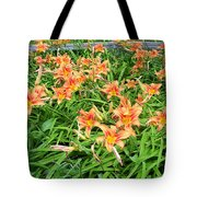 Field Of Tiger Lilies Tote Bag