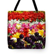 Field Of Tulips Ll Tote Bag