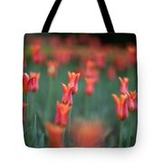 Field Of Tulips Tote Bag
