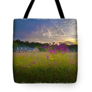 Field Of View Sunset Tote Bag