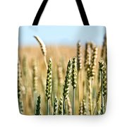 Field Of Wheat Tote Bag