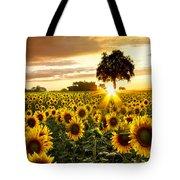 Fields Of Gold Tote Bag by Debra and Dave Vanderlaan