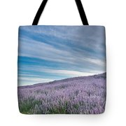 Fields Of Lupine 1 Tote Bag