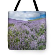 Fields Of Lupine 3 Tote Bag