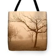 Fields Of Trees Tote Bag
