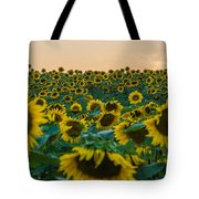 Fields Of Yellow  Tote Bag