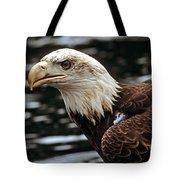 Fierce Bald Eagle Tote Bag