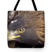 Fierce Golden Eagle Tote Bag