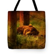 Fiercely Tired Tote Bag