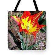 Fiery Beauty Tote Bag
