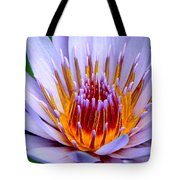 Fiery Eloquence Tote Bag