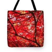 Fiery Maple Veins Tote Bag