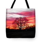 Fiery Oak 2 Tote Bag
