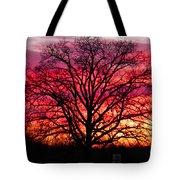 Fiery Oak Tote Bag