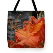 Fiery Orange Azalea  Tote Bag