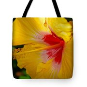'fifth Dimension' Hibiscus Tote Bag