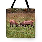 Fighting Bull Elks Tote Bag